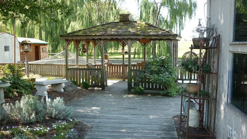 3 Common Backyard Renovation Mistakes